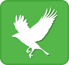 ppss_icon_big_bird